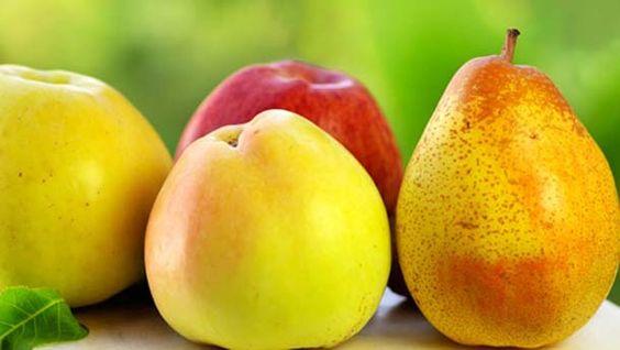 cómo conservar frescas las frutas y verduras